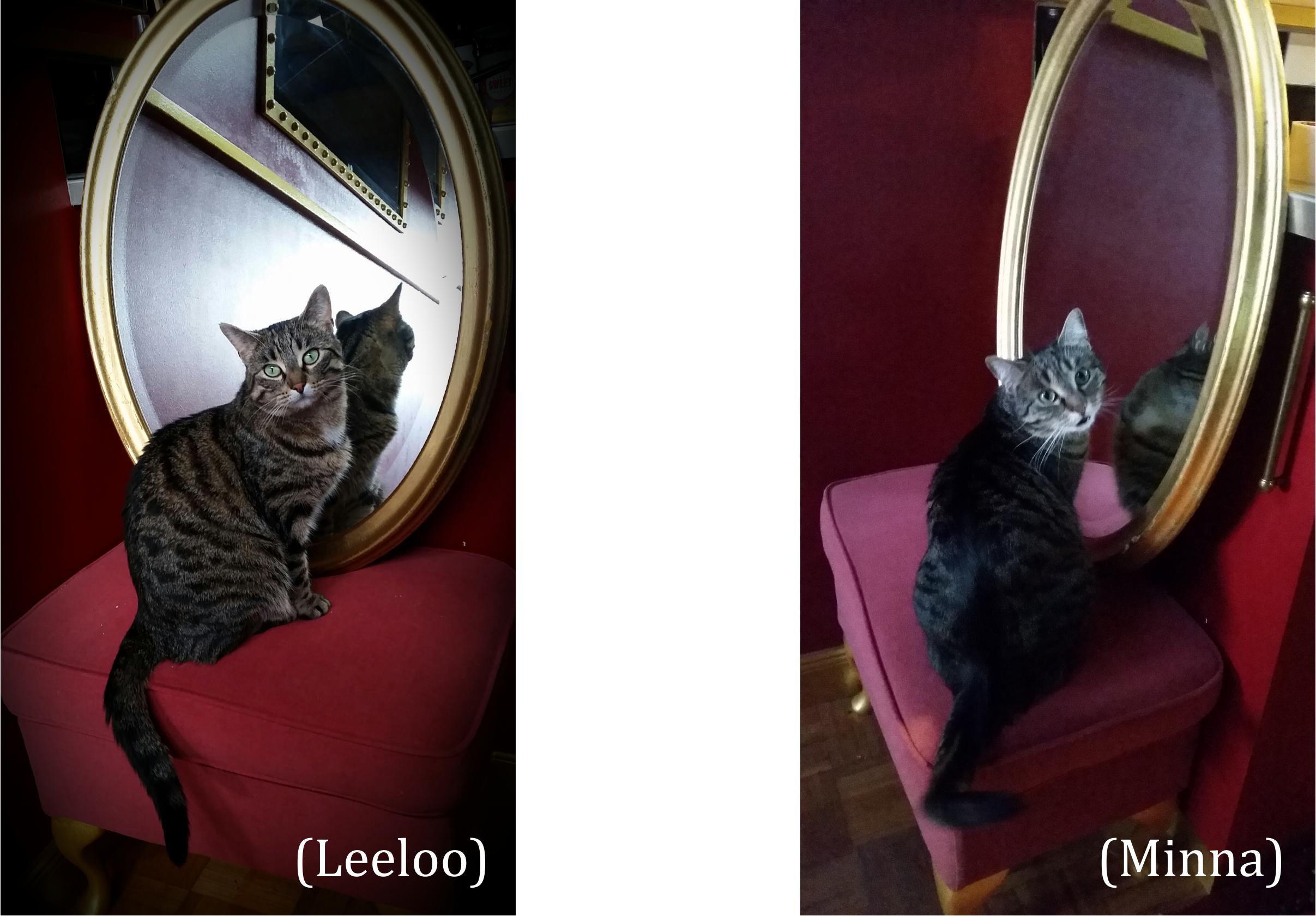 Minna & Leeloo 3